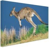 FotoCadeau.nl - Springende kangoeroe Canvas 80x60 cm - Foto print op Canvas schilderij (Wanddecoratie)