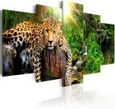 Schilderij - Luipaard, 5 luik