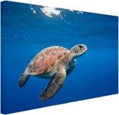Schildpad in de oceaan Canvas 30x20 cm - Foto print op Canvas schilderij (Wanddecoratie)