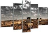 Glasschilderij Natuur | Grijs, Zwart, Oranje | 170x100cm 5Luik | Foto print op Glas |  F001809