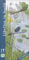 In Beeld 9 - Libellen in beeld