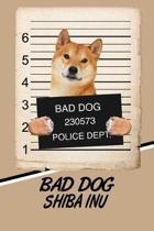 Bad Dog Shiba Inu