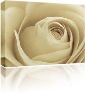 Sound Art - Canvas + Bluetooth Speaker Cream Rose (23 x 28cm)