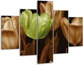 Glasschilderij Tulp | Bruin, Groen, Zwart | 100x70cm 5Luik | Foto print op Glas |  F002602
