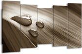 Schilderij | Canvas Schilderij Macro, Druppel | Sepia, Bruin | 150x80cm 5Luik | Foto print op Canvas