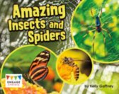 Amazing Insects and Spiders