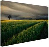 Natuurvelden in Europa Canvas 60x40 cm - Foto print op Canvas schilderij (Wanddecoratie)
