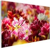 Mutli gekleurde tulpen Glas 30x20 cm - klein - Foto print op Glas (Plexiglas wanddecoratie)