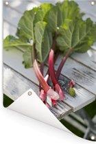 Roze rabarber op een houten tafel Tuinposter 60x90 cm - Tuindoek / Buitencanvas / Schilderijen voor buiten (tuin decoratie)
