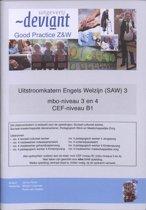 Good Practice / MBO-niveau 3 en 4 / deel Uitstroomkatern Engels Welzijn (SAW)3