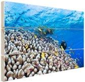 FotoCadeau.nl - Onderwater rif met vissen Hout 60x40 cm - Foto print op Hout (Wanddecoratie)