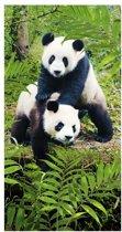 Panda - Strandlaken - 70x140 cm - Multi
