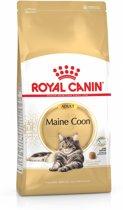 Royal Canin Maine Coon Adult - Kattenvoer - 4 kg