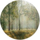 Bos | Wanddecoratie | 90CM x 90CM | Schilderij | Foto op plexiglas | natuur | Landschappen