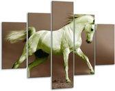 Glasschilderij Paard | Bruin, Groen | 100x70cm 5Luik | Foto print op Glas |  F003682