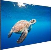 Schildpad in de oceaan Aluminium 30x20 cm - Foto print op Aluminium (metaal wanddecoratie)