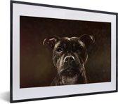 Foto in lijst - Portret van een Staffordshire Bull Terrier fotolijst zwart met witte passe-partout klein 40x30 cm - Poster in lijst (Wanddecoratie woonkamer / slaapkamer)