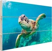 Zeeschildpad zwemmend in Hawai Hout 80x60 cm - Foto print op Hout (Wanddecoratie)