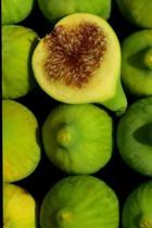 Green Figs Journal