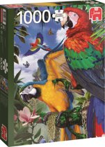 Prachtige Papegaaien 1000 stukjes