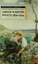 Labour in British Society, 1830-1914