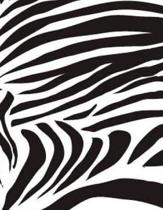 Zebra Print Notebook 8.5 X 11 inches 120 College Ruled Pages Blank Lined