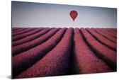 Een luchtballon zweeft op een een lavendel veld Aluminium 30x20 cm - klein - Foto print op Aluminium (metaal wanddecoratie)