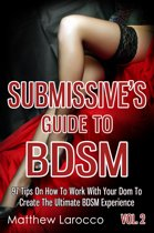 Submissive's Guide To BDSM Vol. 2