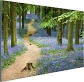 Bospaadje met blauwe bloemen Aluminium 90x60 cm - Foto print op Aluminium (metaal wanddecoratie)