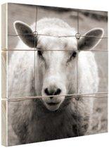 Schaap zwart wit  Hout 50x50 cm - Foto print op Hout (Wanddecoratie)