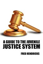 A Guide to the Juvenile Justice System