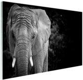 FotoCadeau.nl - Olifant zwart-wit Glas 90x60 cm - Foto print op Glas (Plexiglas wanddecoratie)