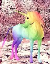 Rainbow Unicorn Composition Book