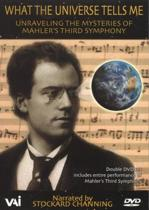 What the Universe tells me - unraveling the mysteries of Mahler's Third Symphony