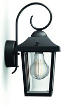 Buzzard wall lantern black 1x60W 230V