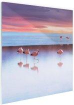 Flamingos bij zonsondergang Glas 60x40 cm - Foto print op Glas (Plexiglas wanddecoratie)