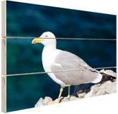 Profiel meeuw op rots Hout 120x80 cm - Foto print op Hout (Wanddecoratie)