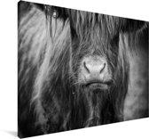 Schotse hooglander kalf zwart wit Canvas 90x60 cm - Foto print op Canvas schilderij (Wanddecoratie woonkamer / slaapkamer) / Wilde dieren Canvas Schilderijen
