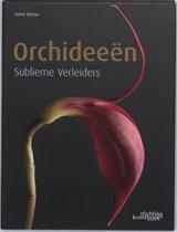Orchideeen