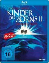 Children of the Corn II: The Final Sacrifice (1992) (blu-ray) (import)