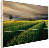 Natuurvelden in Europa Hout 80x60 cm - Foto print op Hout (Wanddecoratie)
