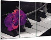 Canvas schilderij Roos   Paars, Zwart, Wit   120x80cm 3Luik