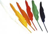 Zwarte Pieten veren gekleurd