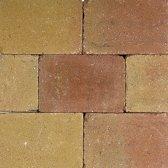 35 stuks! Pebblestone lizard 15x20x6 cm Gardenlux