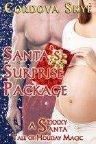 Santa's Surprise Package