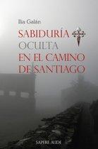 Sabiduría oculta en el Camino de Santiago