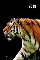 2019 Wochenplaner - Tiger Motiv