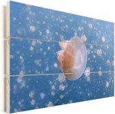 Snorkelen tussen de kwallen bij het kwallenmeer Vurenhout met planken 60x40 cm - Foto print op Hout (Wanddecoratie)