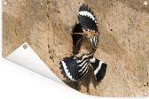 Hop betreedt zijn nest Tuinposter 120x80 cm - Tuindoek / Buitencanvas / Schilderijen voor buiten (tuin decoratie)