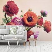 Fotobehang vinyl - Roze en oranje boterbloemen breedte 300 cm x hoogte 240 cm - Foto print op behang (in 7 formaten beschikbaar)